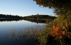Algonquin Fall Morning Royalty Free Stock Photography