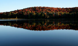 Algonquin Fall Shoreline Stock Image