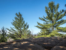Algonquin Hiking Trail. Algonquin provincial park Ontario scenic lookout Hiking Trail Royalty Free Stock Images