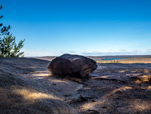 Algonquin Hiking Trail Stock Images