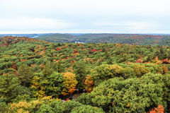 Algonquin National Park in autumn Royalty Free Stock Photos