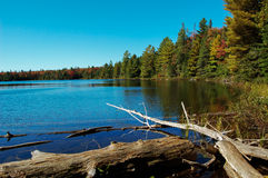Lake in Algonquin Park Early Fall  Stock Photography