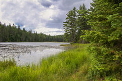Lake in Algonquin Park Stock Photos