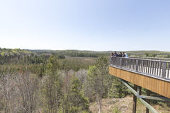 Algonquin Park, Ontario - Canada overlook stock photography