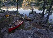 Algonquin Shore and Canoes Stock Image
