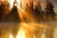 Algonquin-Sonnenaufgang Lizenzfreie Stockfotos