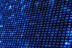 Algorithm Wall Background. Blue Digital Wall. Algorithm Wall Background. Technology Concept Royalty Free Stock Photo