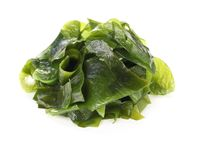 Algue imbibée de wakame images stock