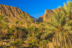 Alguentra canyon Royalty Free Stock Photography