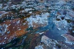 Algues thermophiles Photographie stock libre de droits