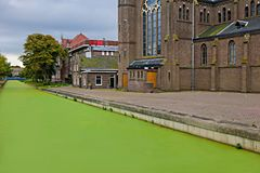 Algues vertes le temps de canal au printemps Photo libre de droits