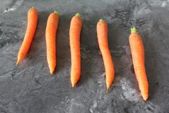 Alguma cenoura fresca Fotos de Stock Royalty Free
