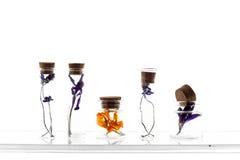 Alguma flor secada no botle pequeno dos glas Foto de Stock Royalty Free