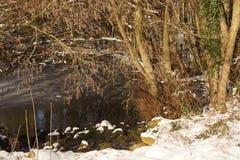 Alguma neve na floresta - França Fotos de Stock