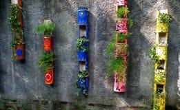 Alguma planta nos bambus coloridos criativos imagem de stock royalty free