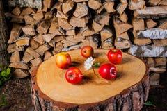 Algumas maçãs no coto no fundo da lenha Fotos de Stock Royalty Free