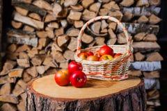Algumas maçãs no coto no fundo da lenha do vidoeiro Imagem de Stock