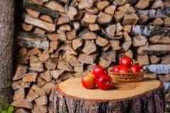 Algumas maçãs no coto no fundo da lenha do vidoeiro Imagens de Stock Royalty Free