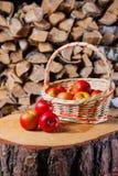 Algumas maçãs no coto no fundo da lenha do vidoeiro Fotografia de Stock