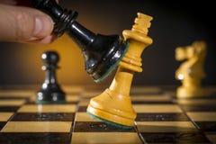 Algumas partes de madeira da xadrez Imagens de Stock