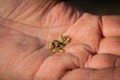 Algumas pepitas de ouro na mão foto de stock