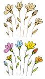 Algunas flores en un blanco Imagen de archivo