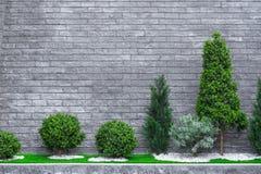 Algunas flores y arbustos agradable arreglados en el jardín nivelado y empedrado imagen de archivo