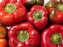 Algunas pimientas rojas Imagenes de archivo