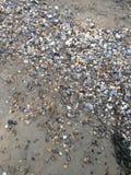Algunas rocas mojadas en una playa arenosa Imagenes de archivo