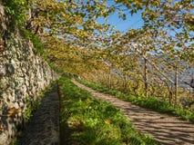 Algunder Waalweg el Tyrol del sur Merano Imagen de archivo libre de regalías