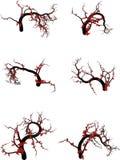 Algunos árboles libre illustration