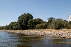 Algunos árboles y el riverbank natural con un rascacielos en el fondo en el río Rhine en el cologne Alemania foto de archivo