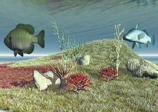 Algunos pescados nadan cerca del filón Fotos de archivo libres de regalías