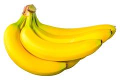 Algunos plátanos en un manojo fotos de archivo libres de regalías