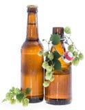 Alguns frascos da cerveja com os lúpulos no branco Fotografia de Stock