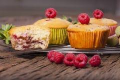 Alguns muffin frescos foto de stock
