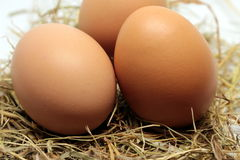 Alguns ovos crus fotos de stock royalty free