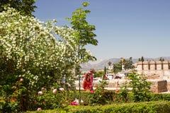 Alhambra κήποι κάστρων Στοκ Εικόνες
