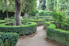 Alhambra κήποι Στοκ Εικόνες