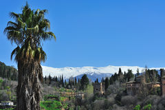 The Alhambra stock image