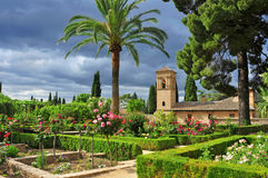 alhambra arbeta i trädgården granada la Fotografering för Bildbyråer