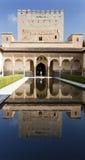 Alhambra Court av myrtenreflexionen Arkivbild