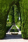 Alhambra de Granada amazing gardens Royalty Free Stock Photos