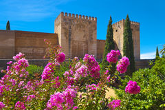 Alhambra fortress. Stock Photos