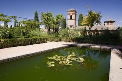 Alhambra garden. With pool, Granada, Spain stock photos