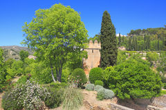 Alhambra garden, Granada, Andalusia, Spain Royalty Free Stock Photography