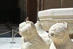 alhambra granada Стоковые Фотографии RF