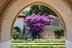 alhambra granada Стоковое Фото