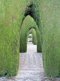 Alhambra Granada dekoracyjny ornamentacyjny ogród z krzakiem wysklepia Obrazy Stock