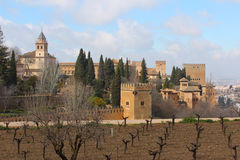 Alhambra Granada from the Generalife garden Stock Photography